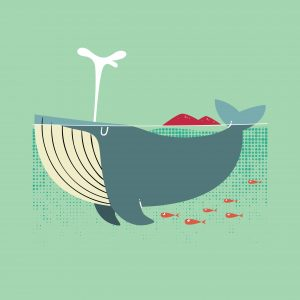 protecting-blue-whales