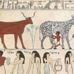 egyptian-animals