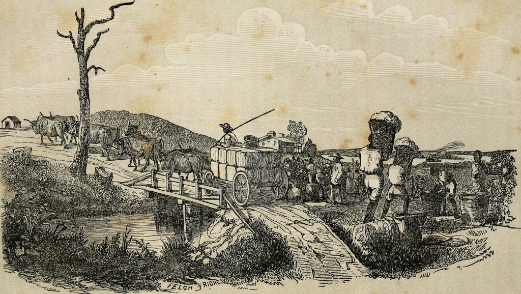 slavery-ancient-greece