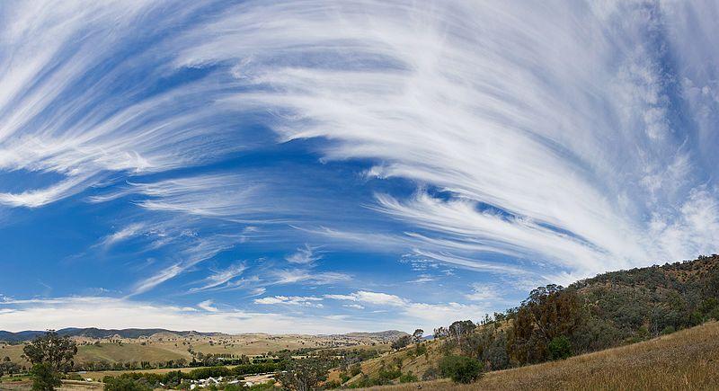 Cirrus sky panorama
