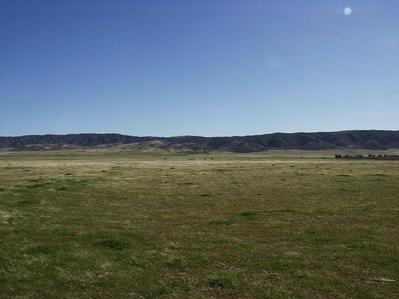 Grassland in the Antelope Valley, California
