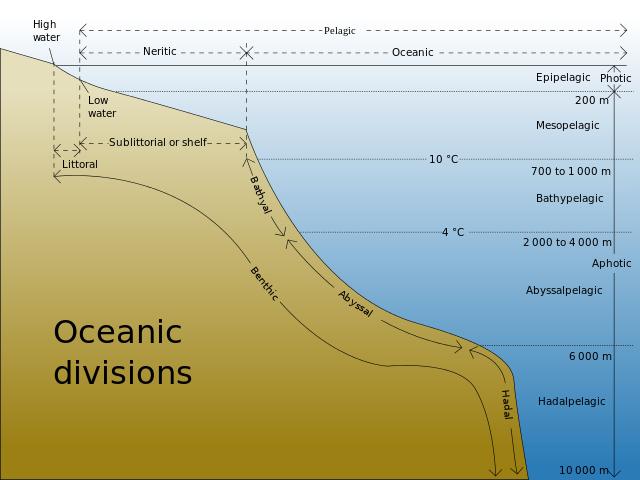 Oceanic Divisions