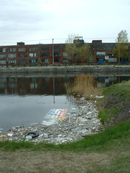 Polluted Water Body