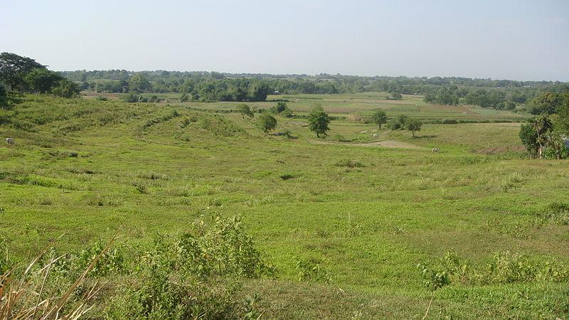 grassland in the Philippines
