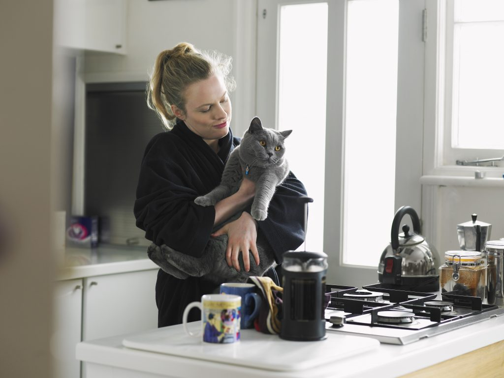 cats curious about coffee
